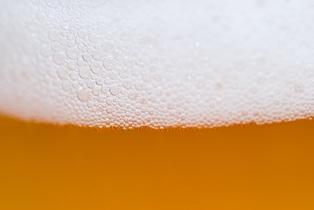 beer-554619