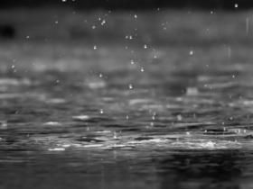 rain-731313