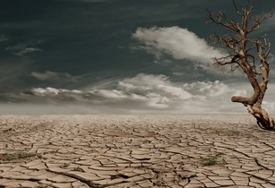 desert-279862
