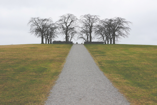 grass-trek