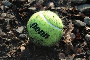 tennis-ball-678735
