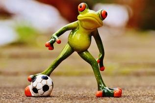 frog-1159287