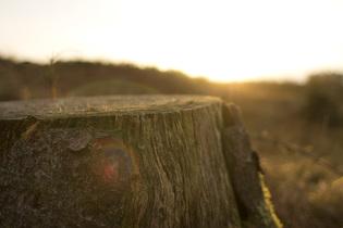 Sunset_Windermere