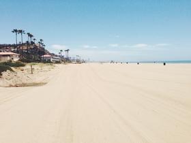 beach-tracks
