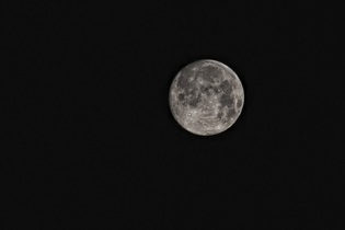 moon-416973