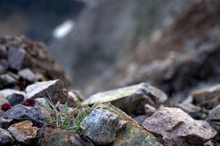 rocks-615752