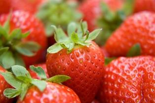 strawberry-730447