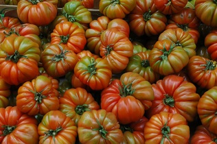tomatoes-744019